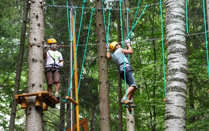 activities orcieres adults trees